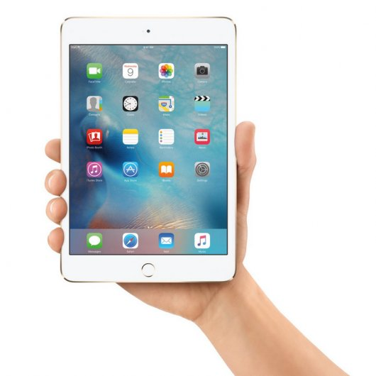 Apple iPad Mini 4 32GB 4G Gris Espacial