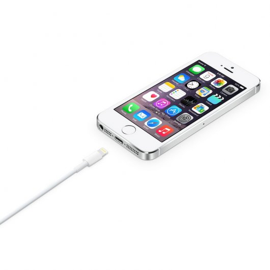 Apple Cable Lightning a USB 50cm